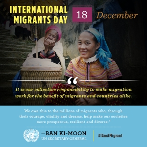 1213-Migration-Graphic-1